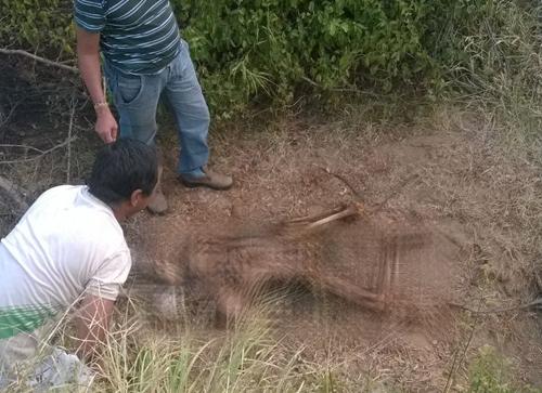 Corpo em estado avançado de decomposição é encontrado em Caculé