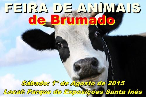 Brumado terá a sua Feira de Animais a partir de 1º de agosto