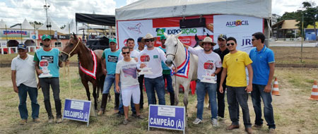 Chapada Diamantina: Haras JVD de Ibicoara participará da Copa do Mundo Marchador em Julho