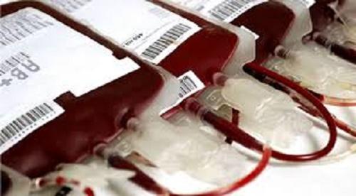 Novos critérios para doação de sangue são estabelecidos devido à febre amarela