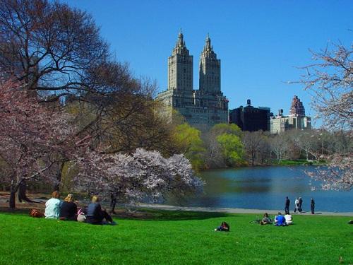 Misteriosos cadáveres flutuantes aparecem no Central Park