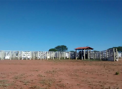 Mais uma conquista: Centro de Comercialização de Animais de Malhada de Pedras receberá investimento de quase 100 mil reais
