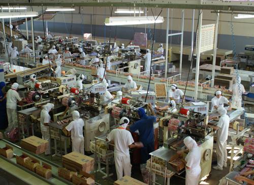 Produção da indústria cai pelo segundo mês seguido, diz IBGE