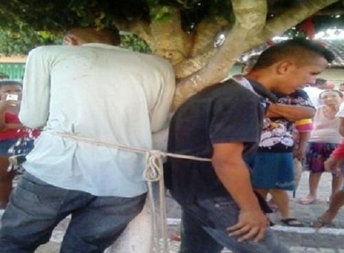 Monte Santo: População persegue e amarra acusados de furtos em árvore; veja vídeo